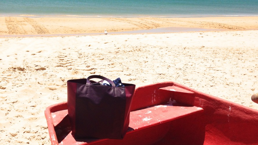 Miss Earhart on the sun-soaked beaches of Portugal