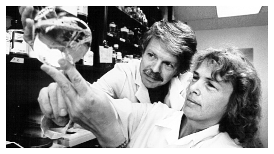 Philippa Marrack & John W. Kappler in their lab (photo: Columbia University)
